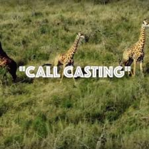 Call Casting cover image