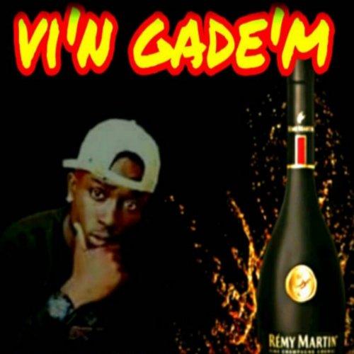 vi'n gade'm cover image