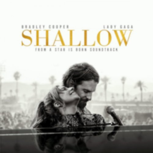 Shallow cover image